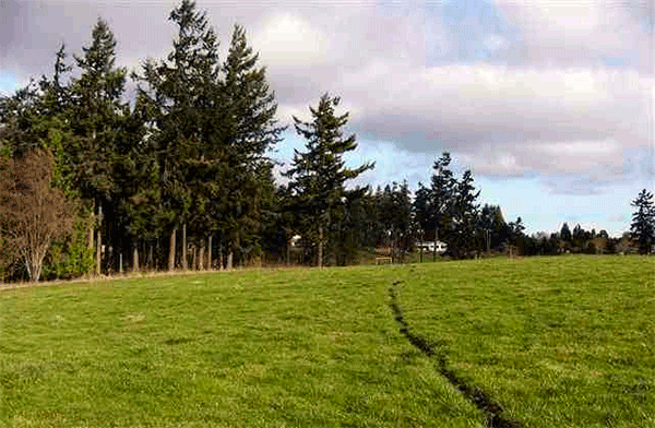 Image of 9999 WOODCOCK RD., SEQUIM