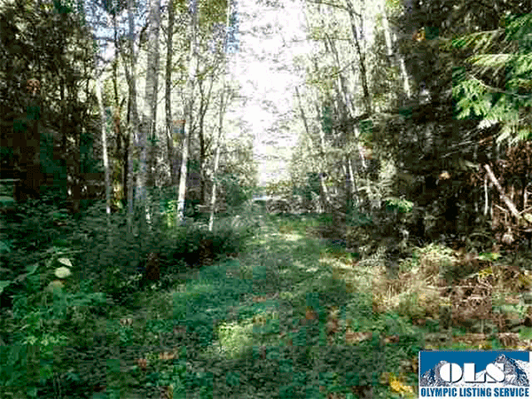 Image of 1078 Township Line Road, Port Angeles