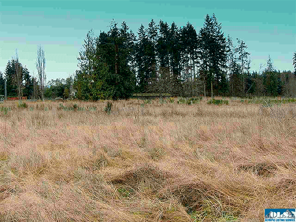 Image of 322 Cassidy Road, SEQUIM
