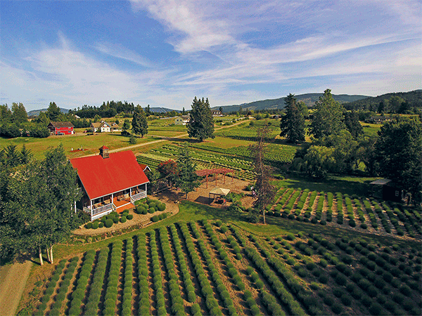 Image of 180 Bell Bottom Road, Sequim