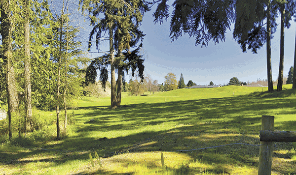 Image of 107 Nello Place Lot #8, Sequim