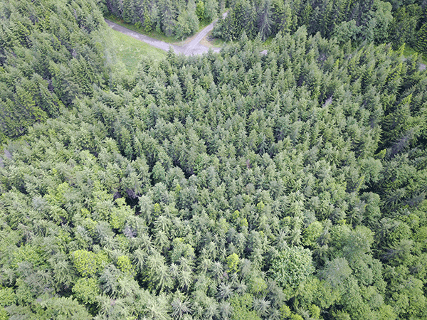 Image of Lot 19 Baker View Drive, Sequim